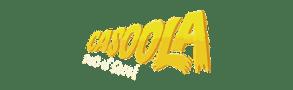 Best Online Casino Reviews- Casoola Logo