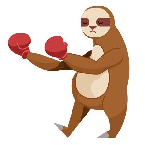Sloth with boxing gloves